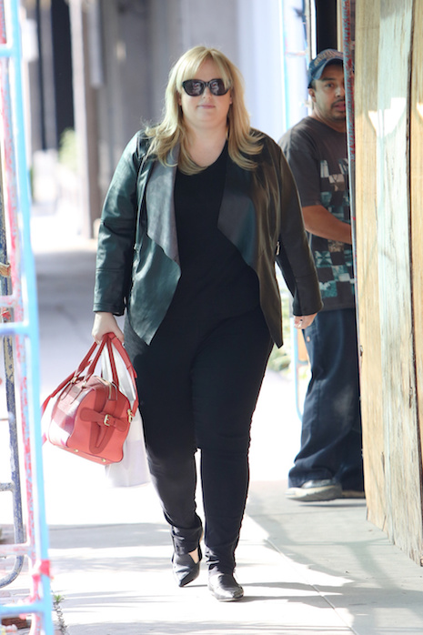 Rebel Wilson enters Nine Zero One Salon with frizzy hair and comes out with it looking nice and smooth in LA